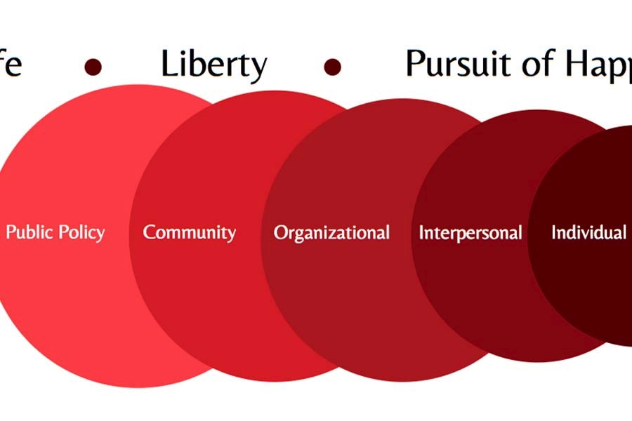 The Declaration Initiative Project Value Graphic.