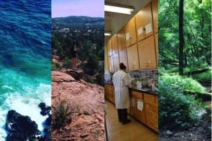 Earth Science Women's Network image of the lab, forest, ocean, and desert