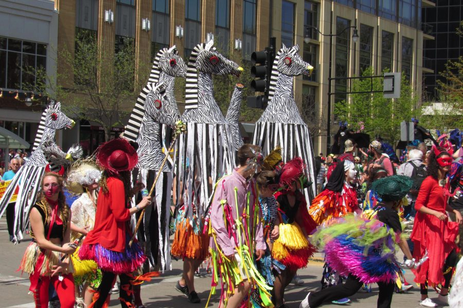 Arts and Wellbeing Zebra Parade.
